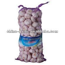 China Pizhou Garlic Price (20kg Red garlic)