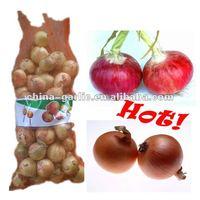 2012 Harvest China Fresh Organic Yellow Onion/Red Onion (20kg/bag)