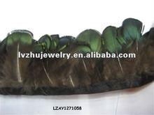 lady Amherst pheasant plumage fringe trims natural LZAY1271058
