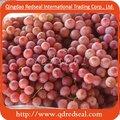 Raisin rouge frais de globe de Chinse