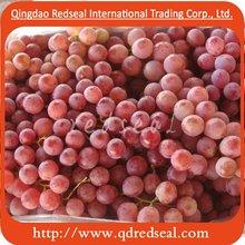 Chinse Fresh Red Globe Grape