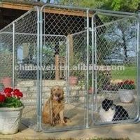 dog breeding runs