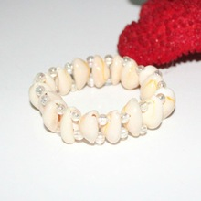 elegant sea shell design 2012