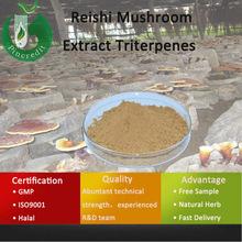 Reishi Mushroom Extract/Reishi Extract/Reishi Mushroom Extract Triterpenes