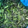 frozen vegetables komatsuna from china wholesale