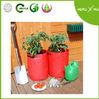 PE vegetable/tomato/potato planter
