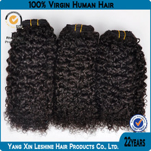 Wholesale 100% Human Remy Virgin Natural Brazilian Tight Curly Hair
