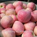 manzana fresca de fuji frutas tropicales nombres