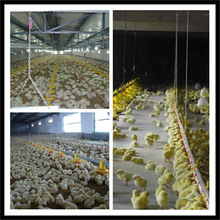 high effecient pivot irrigation systems for farming in libya as chicken house steel structure
