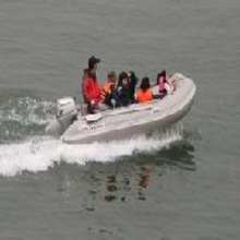PVC inflatable fold up boats,rigid inflatable boats,cheap inflatable boat