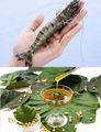 lecitina de soja de fuente de energía para los feeds aqua