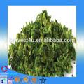 Verduras lista de precios / dry brócoli / semillas de brócoli
