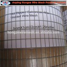 metal Pet cage/ bird cage wire mesh/galvanized welded wire mesh