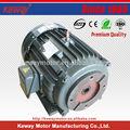 Kwy2 3 fase motor hidráulico rossi