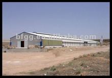 steelchicken house include breeding chicken cage for birds design&equipment