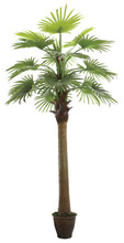 2014 hot sell palm tree picture frames