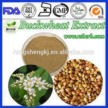 Health Care Tartary Natural Buckwheat Extract