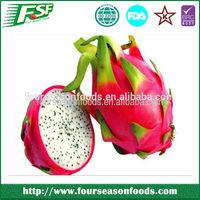 2014 Hot selling iqf organic dragon fruit