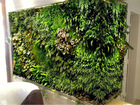 Vertical garden products,wholesale artificial vertical garden products