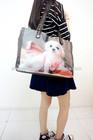 fashionable animal printed leisure handbag lovely dog and cat printed bag