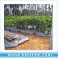 Prata Mulch plástico preto para árvores plantação