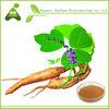 Supply Natural Puerarin 98% HPLC / Kudzu Root Extract powder/kudzu vine root powder
