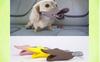 Wholesale Soft Dogs' Masks Anti Bark Muzzle Silicone Muzzle Dog Masks