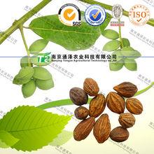 Pure herb medicine Radix Rehmanniae Preparata