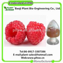 factories supplying 4%Raspberry Ketone Raspberry Extract
