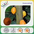 China kräuterextrakt führender Anbieter Kakao-Extrakt/kakaosamen extrahieren/kakaobohne Polyphenole