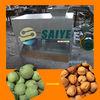 Best selling green walnut huller/fresh walnut sheller machine