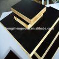 De alta calidad de cine negro se enfrentan madera contrachapada/construcción& ciegos