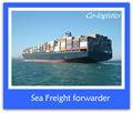 Melhor preço de transporte marítimo da china para victoria--- ada skype: colsales10