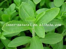 bulk pure stevia extract 80%Steviosides