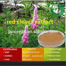Herbal extract red clover extract red clover extract