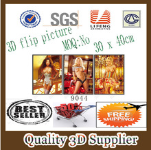 Guangzhou Lifeng Item No 9044 Lenticular Nude sexy Girls 3D Picture with flip effect in stock