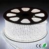 double line rgbw 110V 220V flexible waterproof 5050 led strip light nichia