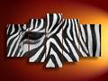 Peint à la main peinture à l'huile d'art de zebra pour le salon de peinture avec des cadres tendue décoration à la maison