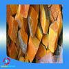 New crop Fresh Pumpkin Iqf / Frozen Pumpkin / Fresh Pumpkin for wholesale price