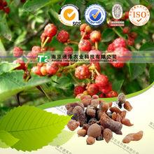 Raw material herb medicine mastic