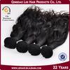 Alibba Express Gold Supplier Qingdao Lisi Brazilian Water Wave Hair Extensions
