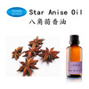 /product-gs/factory-wholesale-star-anise-oil-60011740409.html