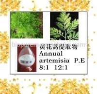 Artemisia annuaL. Extract/wormwood extract/Artemisia apiacea extract