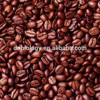 Cocoa seed P.E.