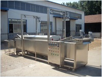 Automatic Continuous Fryer with Factory Price
