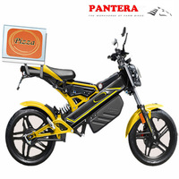 PT- E001 Popular High Quality Beautiful Electric Sport Motorcycle