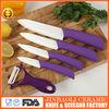 ceramic ceramic coating knife making grinder for sale