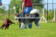 Garden Landscaping artificial grass mat for dogs