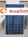 240w poli panel solar