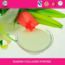 Hydrolysate Collagen & Gelatin + vitamin c/collagen vitamin c